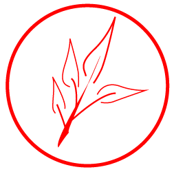 Illustration of a branch containing four leaves enclosed in a red circle filled white.